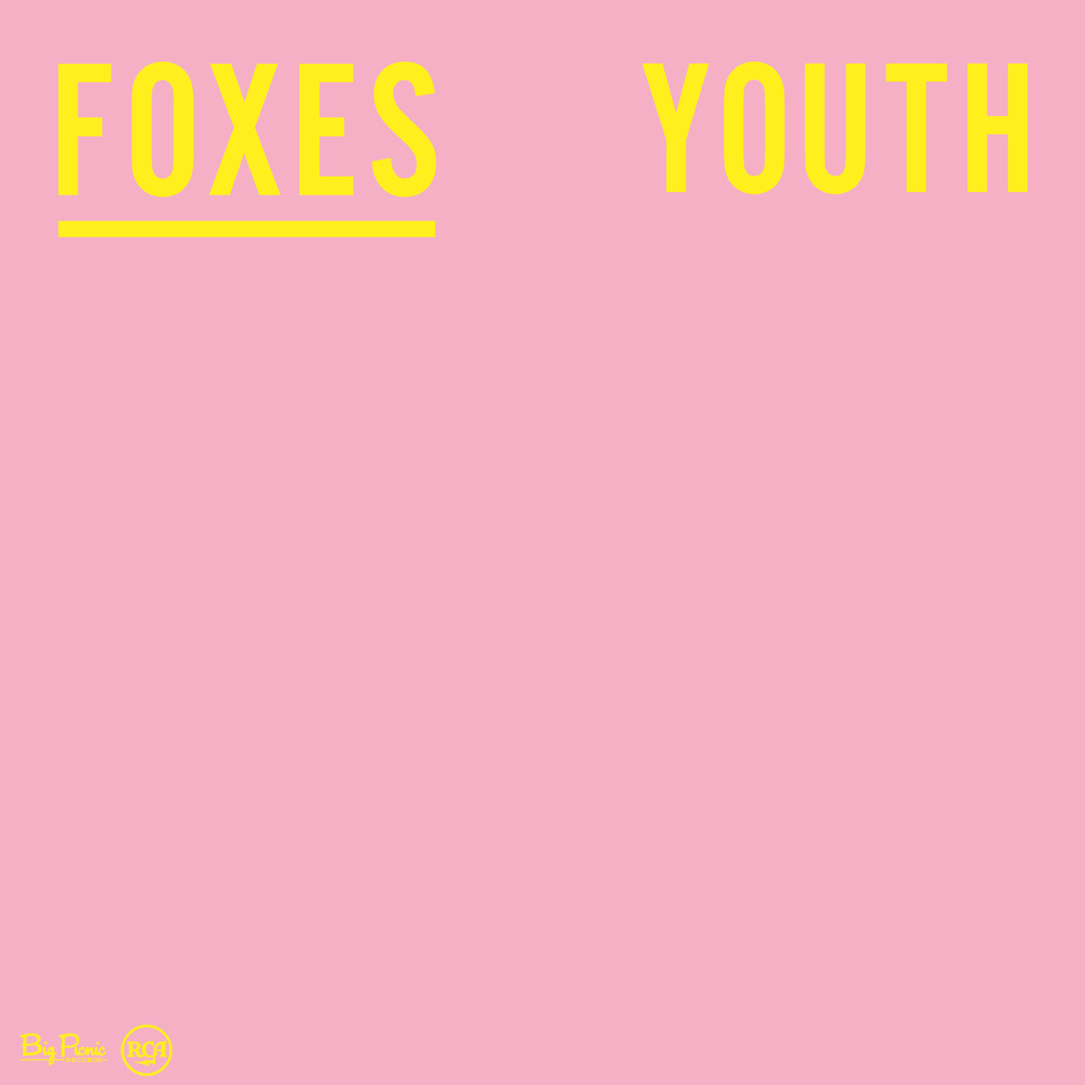 Foxes_Youth_logos