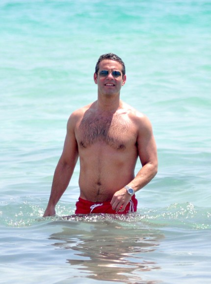 Andy cohen gay